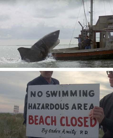 27 Best JAWS (1975) Images On Pinterest