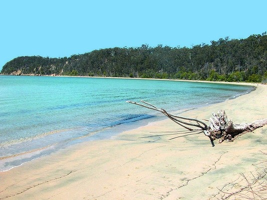 Australia's best beaches ... Boydtown, near Eden, NSW.