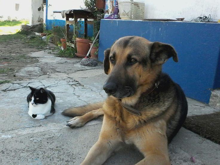 Jake and Freddie.