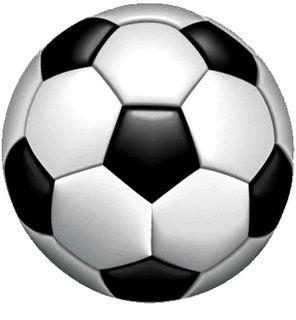Fakta Fakta Unik Seputar Olahraga Sepakbola | Berita Terbaru 2013