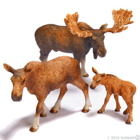 Animal Figurines - Schleich makes a wide variety of anatomically correct animals.  It would be great if Amy had a collection of animals that she could potentially see here in Colorado (wild animals and farm animals).