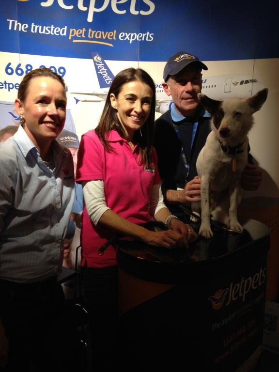 Our brand ambassador Sahara had a great time and met some wonderful fans at this years Dog Lovers Show in Melbourne!