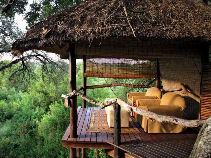 Londolozi Tree Camp, Kruger National Park, South Africa...incredible...Games Reservation, The View, South Africa, National Parks, Trees House, Places, Dreams Porches, Londolozi Games, Weights Loss
