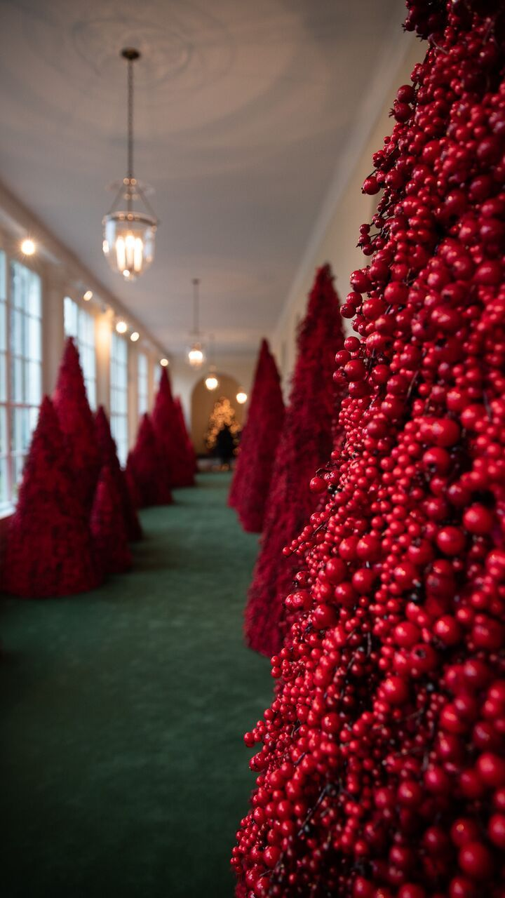 What I Saw During A First Look At The White House Christmas Decorations White House Christmas Decorations White House Christmas White House Christmas Tree