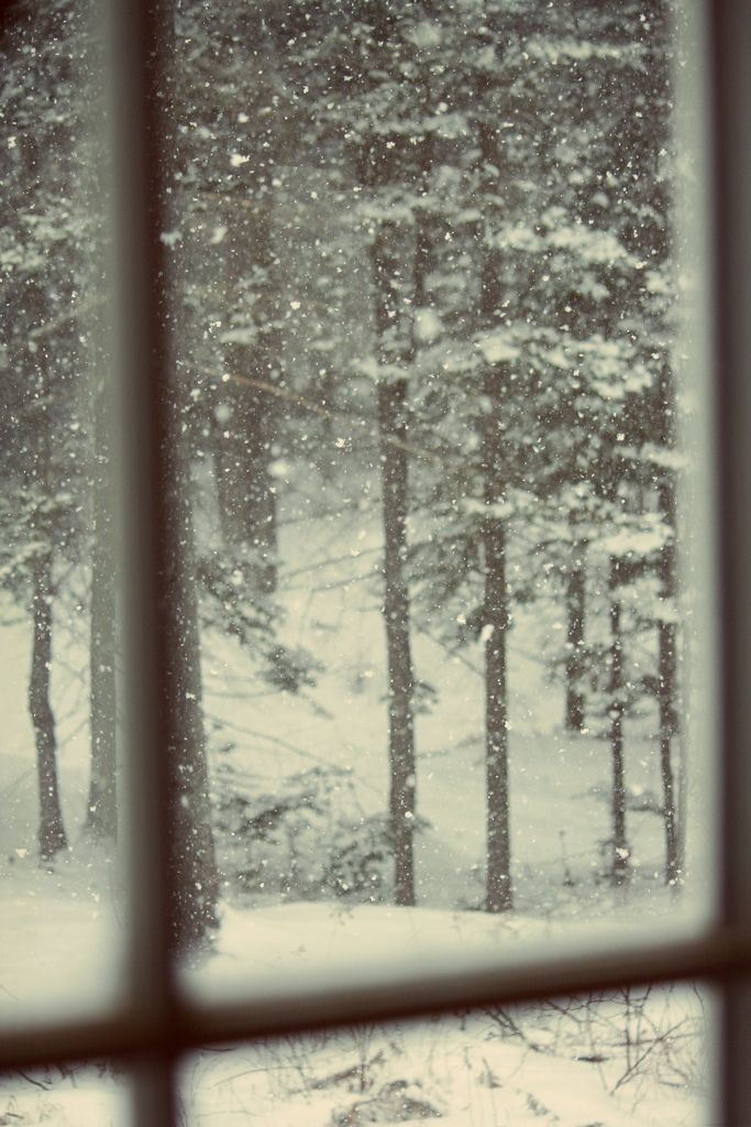 The quiet warm of inside while watching the quiet cold beauty of falling snow.
