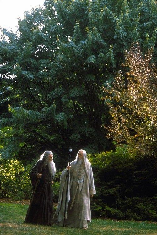 Lord of the Rings--Gandalf & Saruman