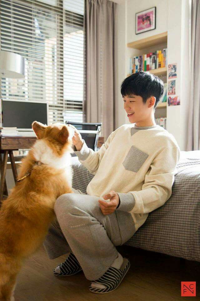 Jung Hae In | While You Were Sleeping | Just looking at him makes my heart flutter.