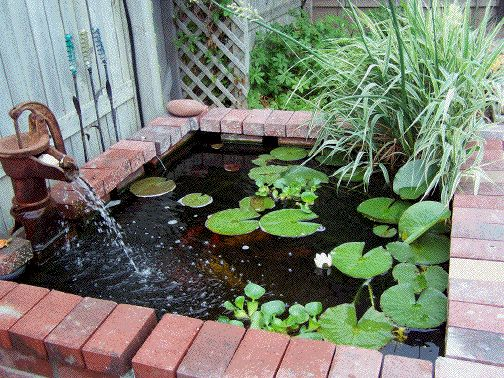 how to build an in ground fish pond