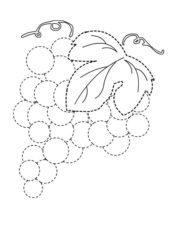grapes trace line worksheet for kids (1)