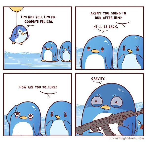 Who feels this penguin?
