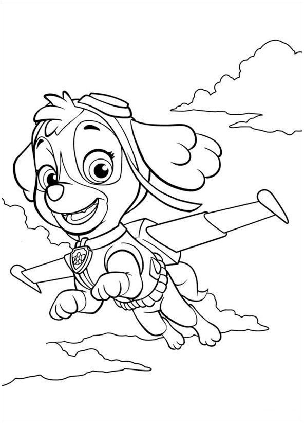 sky coloring page paw patrol  youngandtae  paw