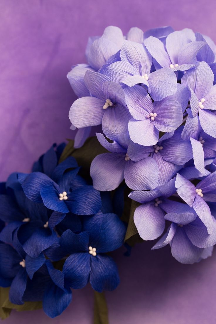 Crepe Paper Hydrangea, handcrafted and photographed by Papetal