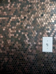 penny wall. I would use a different switch plate. Maybe a knobby beat copper look.