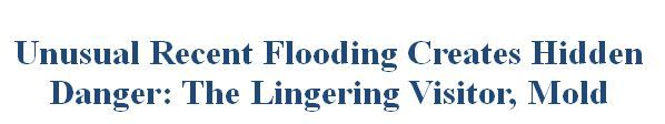 Flooding results in hidden dangers to families and businesses, including, viruses bacteria and mold spores carried, by the flood waters. A new weapon can be used by homeowners and business owners to fight back and reclaim their homes and health. http://www.safemoldsolutions.com