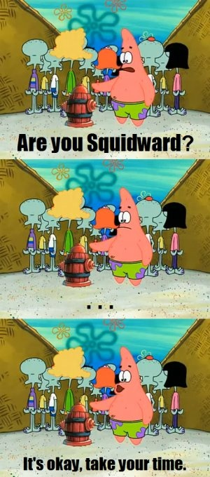 Patrick Star haha silly, that not squidward