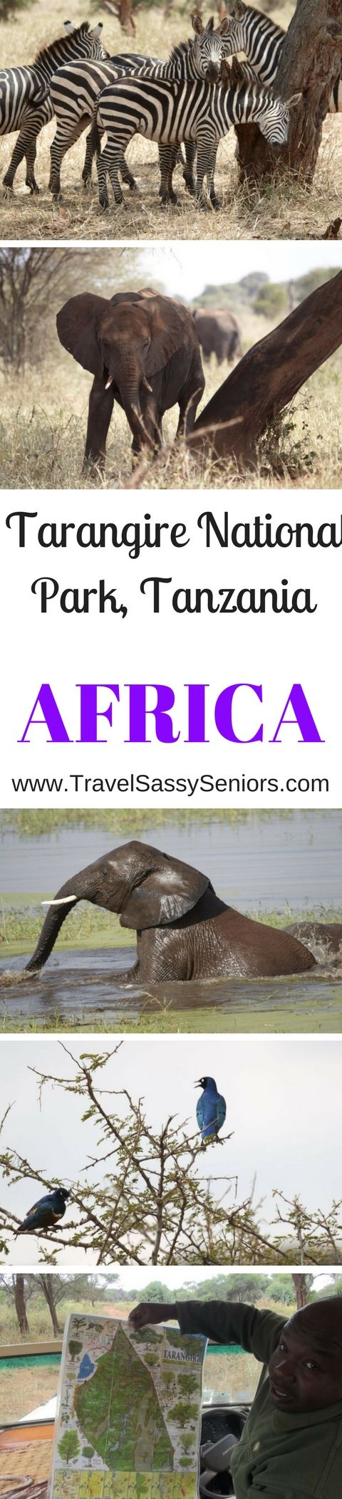 Tarangire National Park covers an area of 2,850 square kilometers which places it as the sixth largest national park in Tanzania.