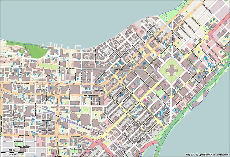 Vector map of downtown Madison Free United States Vector
