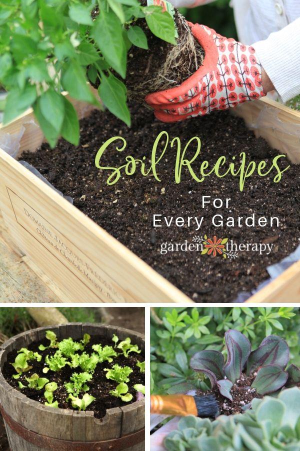 The Best Potting Soil For Plants 6 Peat Free Diy Soil Recipes