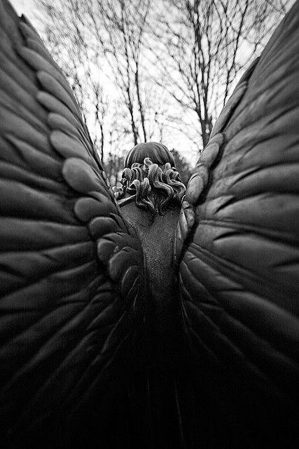 ,Angel Wings, Angels Statues, Cemetery Angels, Beautiful, Art, Angels Sculpture, Angels Wings, Weeping Angels, Guardian Angels