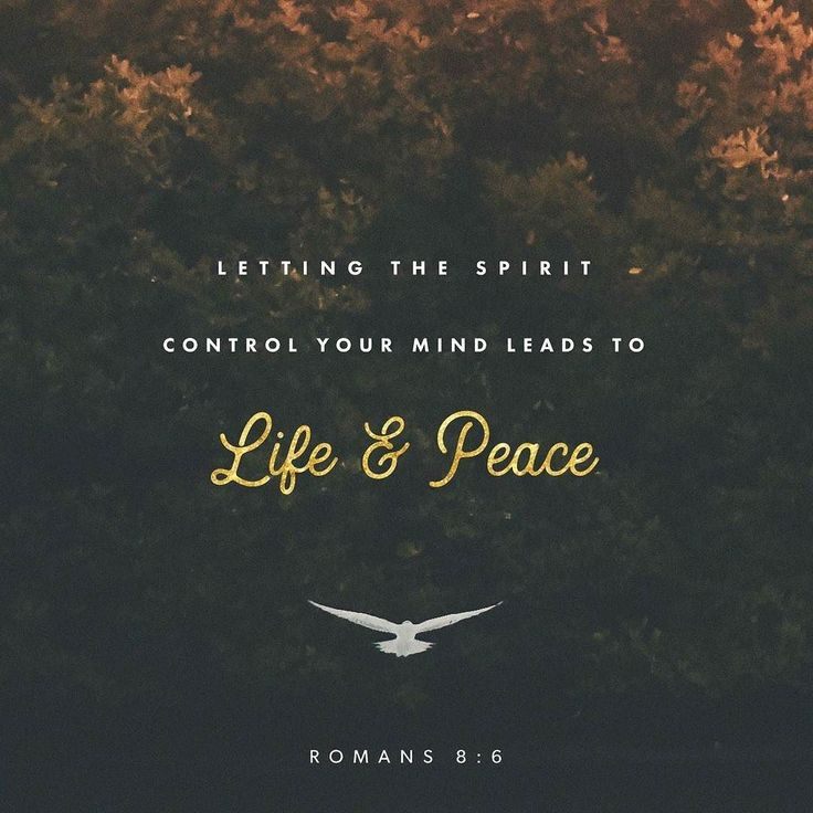 The concern of the flesh is death but the concern of the spirit is life and peace.  For the concern of the flesh is hostility toward God; it does not submit to the law of God nor can it;  and those who are in the flesh cannot please God. Romans 8:6-8 NABRE http://ift.tt/2txkjvV