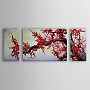 Hand Painted Oil Painting Floral Plum Flowers... – EUR € 115.49