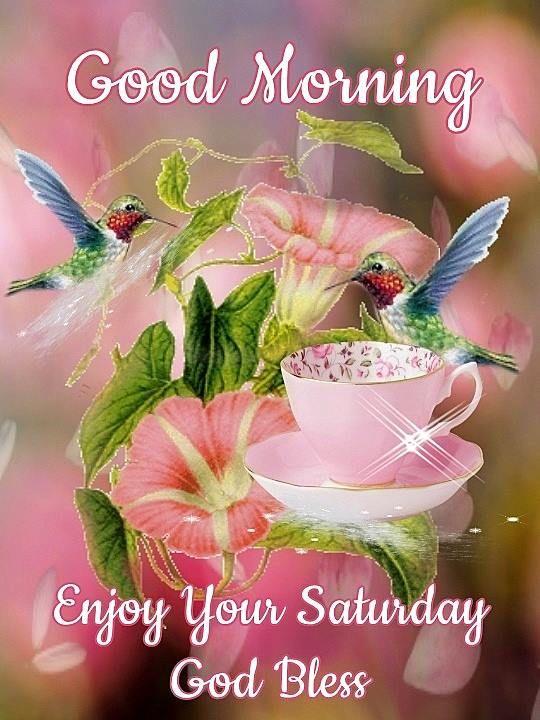 Good Morning. Enjoy your Saturday. God Bless #saturday hummingbirds flowers birds