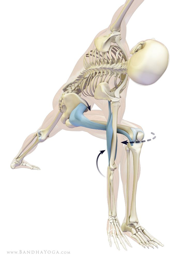 Achieve alignment by engaging the tensor fascia lata on the bent leg. To activate this muscle straighten the elbow and then gently press the outside of the knee against the arm, as shown. This abducts the thigh at the hip joint. Because the arm keeps the knee from moving backwards, the abduction component of the TFL has the biomechanical effect of drawing the pelvis forward. This helps to open the front of the body in the asana!