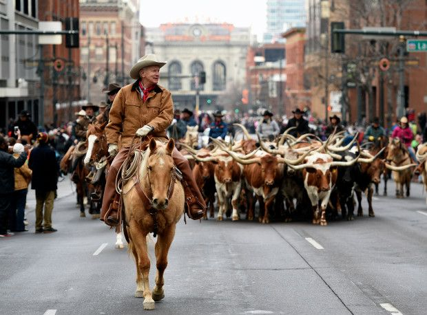 Stock Show 2020.National Western Stock Show 2020 Schedule Of Events