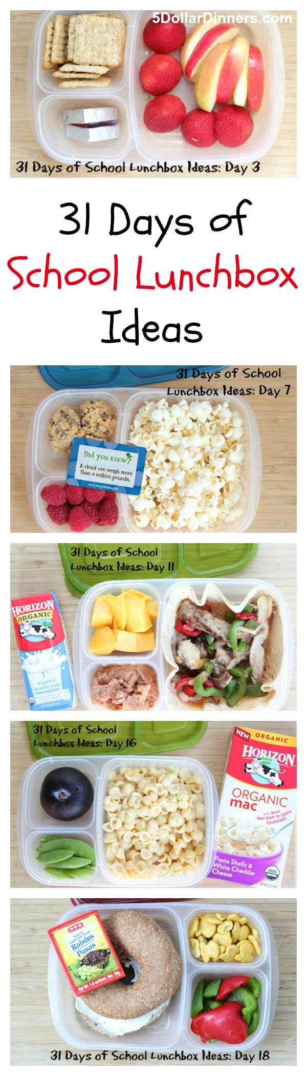 No more boring lunches!  Forget plain ol' peanut butter & jelly sandwiches.  Get your creative juices flowing with our 31 Days of School Lunchbox Ideas from 5DollarDinners.com