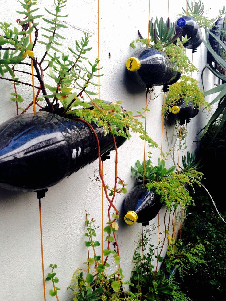 #7 BottledEarth_Rooftopgarden_Durban_SouthAfrica #garden #earth #reuse