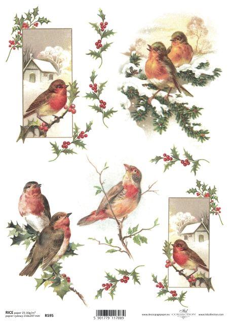 http://www.kreatywnyswiat.pl/pl/p/Papier-ryzowy,-Ptaki,-A4-ITD-R595/6332
