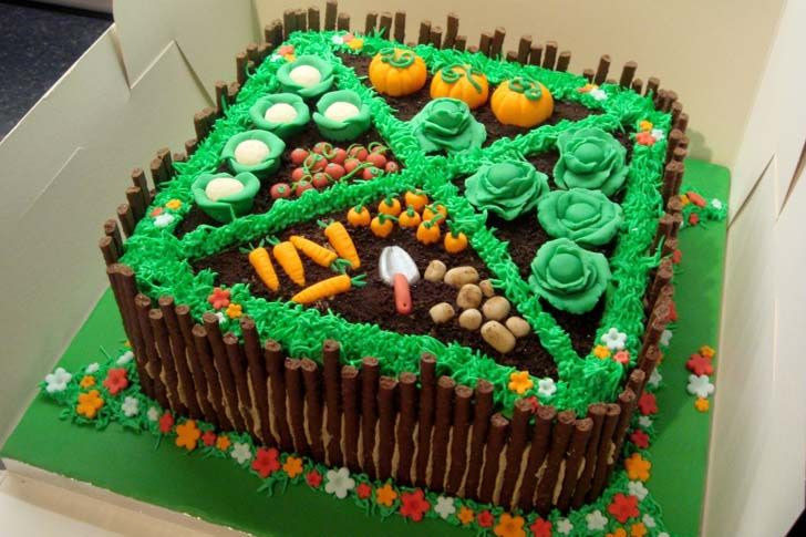 Image result for google images fruit decorated garden cakes