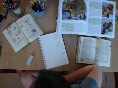 Creating the circumstances in which authentic learning can happen: the power of dedicated project time | Project Based Homeschooling