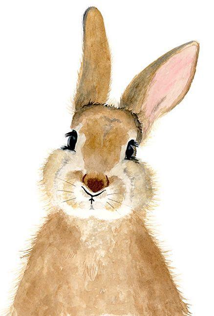 Watercolor bunny rabbit Woodland nursery Animal Paintings Fox watercolor animal …