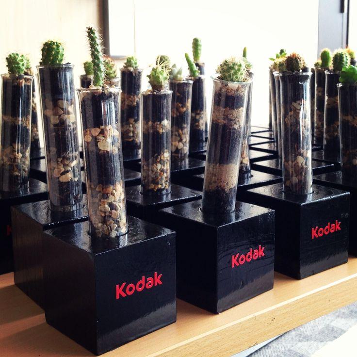 Regalos Corporativos por Cactil Cactus Land