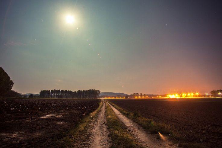 splitshire road illuminated by the moon