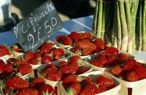 Variété de fraises - Recettes fraise - «Sentir bon», ou fragare en latin : telle est l'origine du mot fraise. Mais on devrait plutôt parler des fraises : il en existe en effet 600 variétés, qui diffèrent en taille, en texture, en couleur et en saveur...