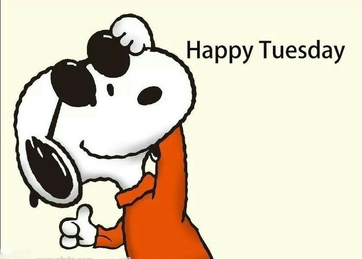 Best 25+ Happy Tuesday Quotes Ideas On Pinterest