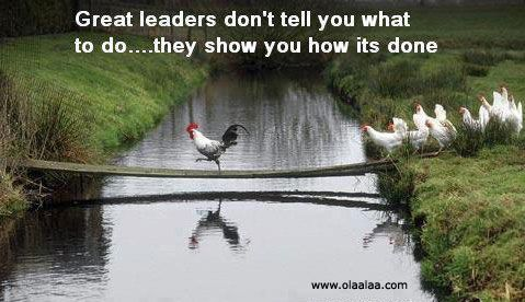 Funny Leadership Quotes 63 Best Leadership Images On Pinterest  Leadership Quotes