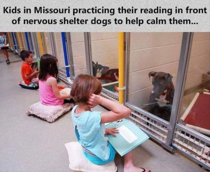 Faith In Humanity Restored - 19 Images