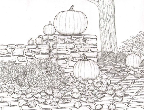 159 best coloring pages autumn halloween pumpkins for Pumpkin coloring pages for adults