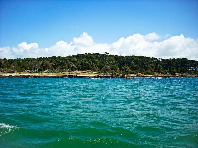 #island #uruguay #Punta del Este #sea #ocean #colors #summer #vacation # holyday #paradise DSCN3962 by FotografiArte :), via Flickr