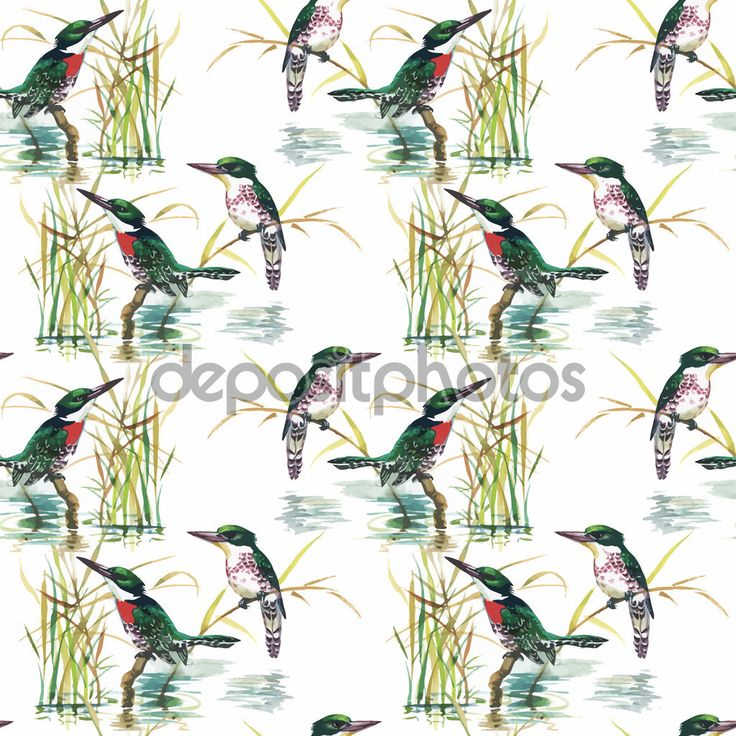 Ακουαρέλα άγρια εξωτικά πουλιά σε χωρίς ραφή πρότυπο λουλούδια σε άσπρο φόντο