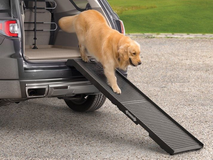 2016 Kia Soul | Pet Step - Folding Pet Ramp for Cars SUVs and Minivans | WeatherTech.com
