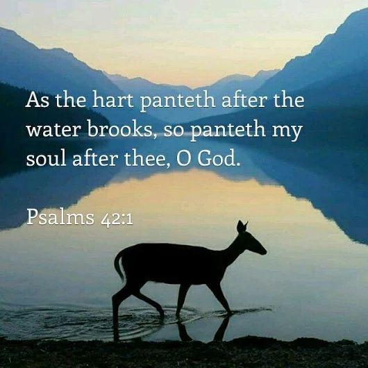 Image: 1000+ ideas about Psalm 27 Kjv on Pinterest | My Horoscope, Psalm ...