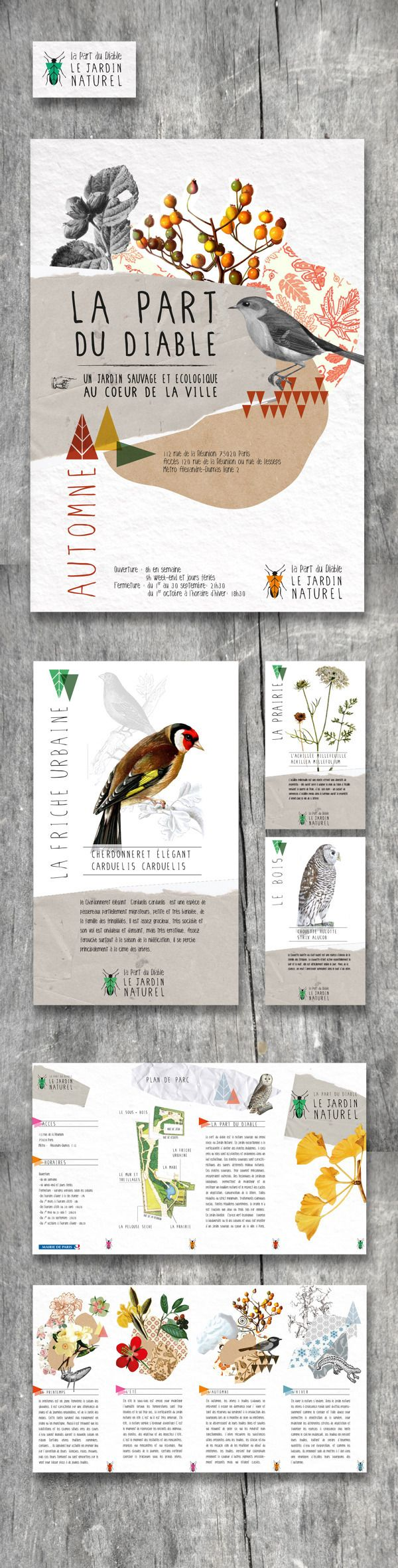 Bird guide BROCHURE Natural Garden, Paris by Marion Dufour editorial design with