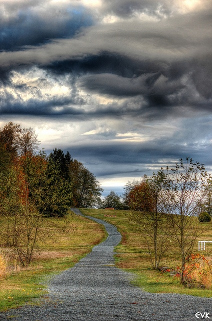 Campbell Valley Park Horse Trail 22 HDR~EVK by pilostic, via Flickr - Langley, BC