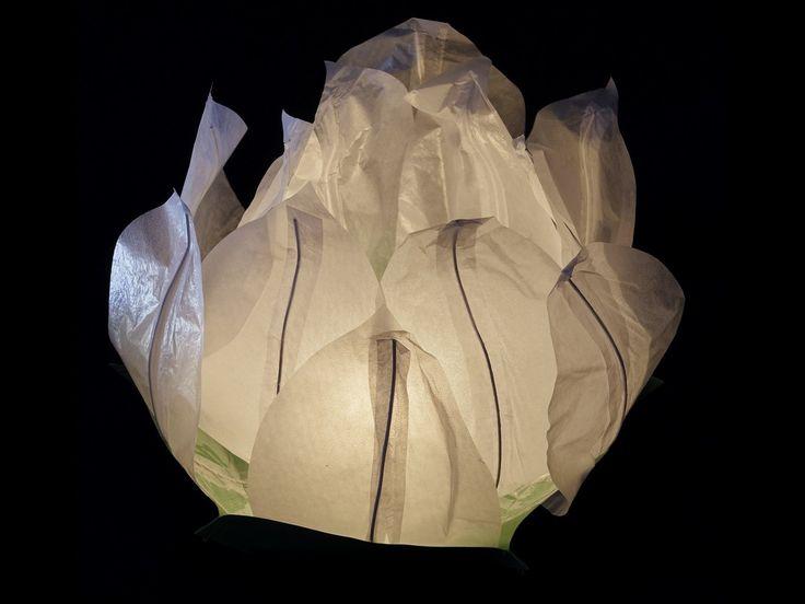 Ninfea Galleggiante di carta di riso bianca.Diametro 50 cm. Sono inclusi la candela, il manuale e il pennarello. Riutilizzabile, basta cambiare la candela.Istruzioni, la preparazione è molto facileScrivere...