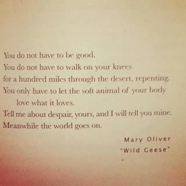 """Mary Oliver's """"Wild Geese"""""""