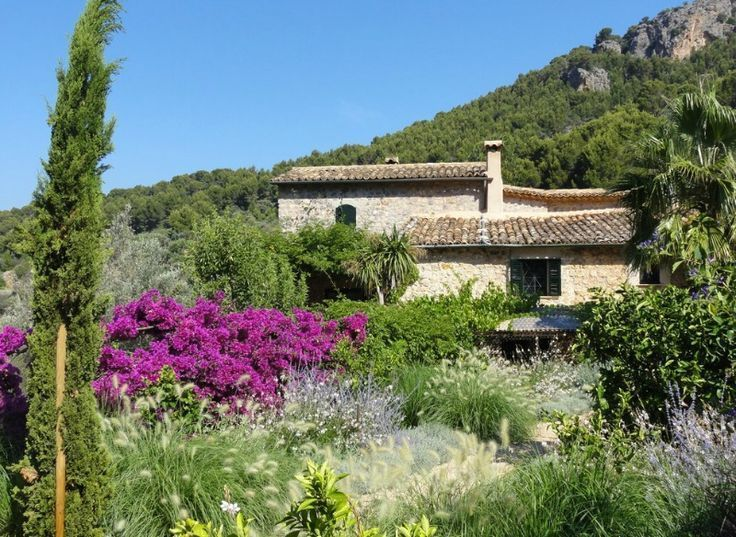 El jardín mediterráneo ecoeficiente – Guia de jardin – #de #ecoeficiente #el #…